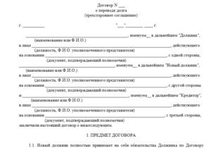 Договор перевода долга двухсторонний образец рб
