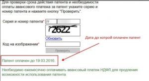 Как проверить оплату патента иностранному гражданину