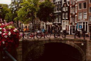 Как уехать в нидерланды на пмж из россии