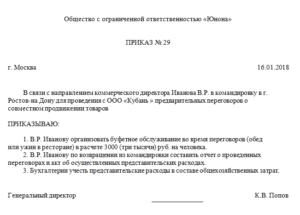 Комиссия по списанию представительских расходов образец