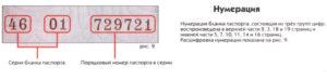 Рандом серия и номер паспорта
