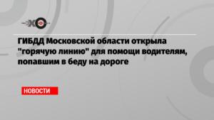 Горячая линия гаи московской области