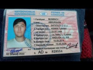 Новая водительская права узбекистана можно работать в россии