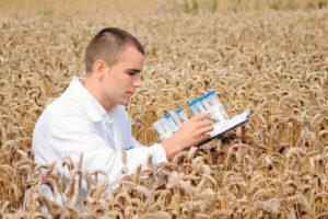 Выплаты молодым специалистам в сельском хозяйстве в рб