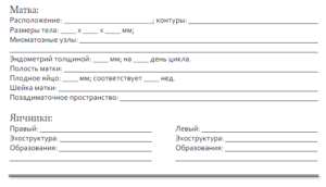 Протокол узи органов малого таза образец
